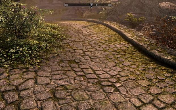 دانلود بازی Skyrim Realistic Overhaul برای بازی Elder Scrolls V: Skyrim